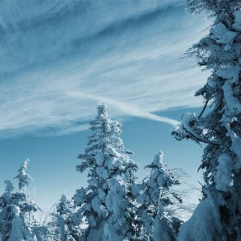 Verschneite Winterlandschaft im Tölzer Land, Isarwinkel, Lenggries in Bayern Schneeschuhwandern Betriebsausflug